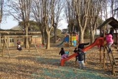 giardino autunno3