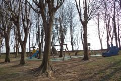 giardino primavera (12)